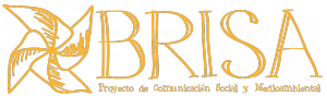 Logo de Proyecto Brisa